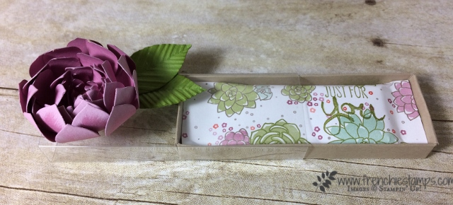 Candy Wrap, Succulent Framelis, Paper Flower, stampin'Up!
