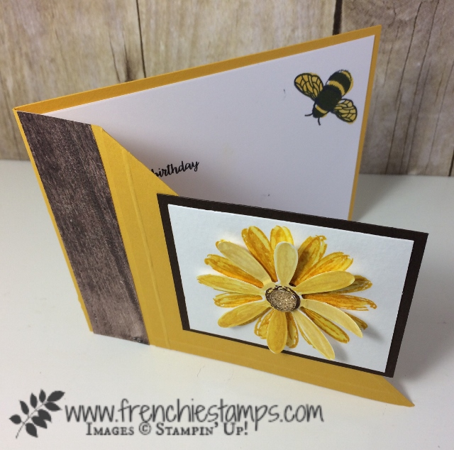 Corner Fold card, Daisy Delight, Daisy Punch, Stampin'Up!