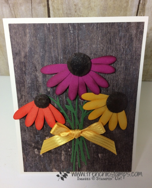 Daisy Punch Coneflower, Stampin'Up!