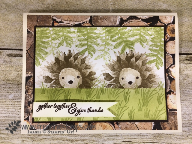 Painted Harvest Hedgehogs, Stampin'Up!