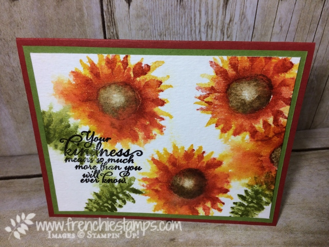 Painted Harvest, Watercolor, Stampin'Up!, Stamping class in the mail