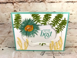 How to use the Stitched Seasons with Painted Harvest and Floral Frames stamp set. Note cards and a-2 size card. All Stampin'Up! product at frenchie stamps.