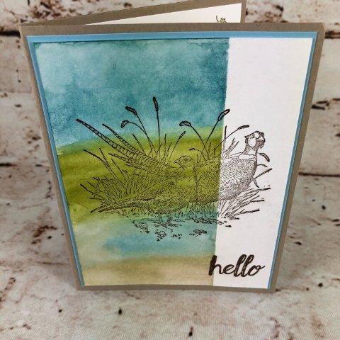 Pleasant Pheasants and Sponging Watercolor