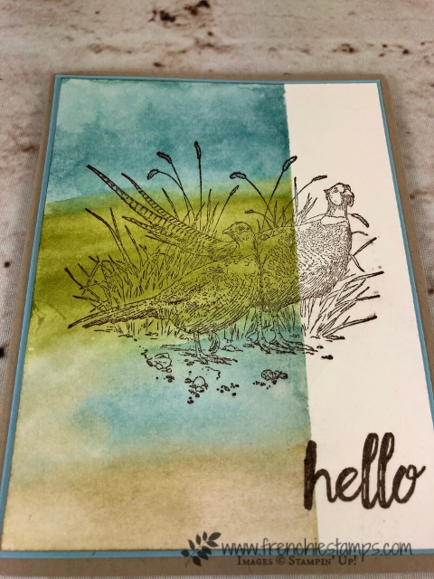 How to make a background with sponge and aqua painter. Simple and perfect for detail stamps. Stamp set is Pleasant Pheasants. All product are by Stampin'Up! and can be purchase at frenchiestamps.com