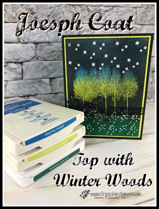 Joseph Coat and Winter Woods