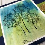 Water Drop on Brusho for a cool background. Stamp Set Dandelion Wishes. All product by stampin