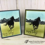 How to make a silhouette with a detail stamp. Let it ride is a great set to start doing a silhouette. All supplies by Stampin