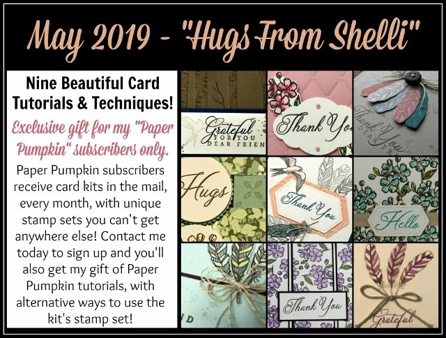 May 2019 Paper Pumpkin Hugs from Shelli extra ideas with the stamp set. Paper Pumpkin by Stampin'Up! detail at frenchiestamps.com