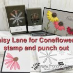 Learn how to make a coneflower with the daisy punch and the daisy lane stamp set. I have them in 2 size the large and medium. All supplies are by Stampin
