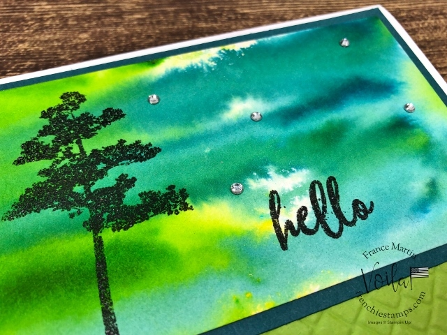Pigment Sprinkles on watercolor paper. Stamp set Rotted in Nature. All supplies by Stampin'Up! available at frenchiestamps.com