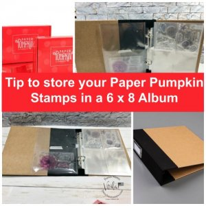 Tip To Store You Paper Pumpkin Stamps and more