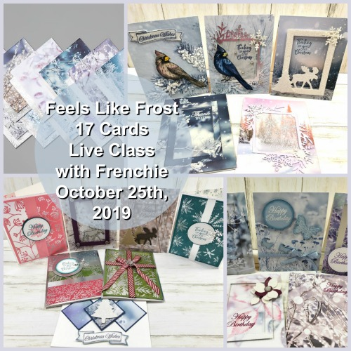 How to make 17 card with 1/4 pack of Feels Like Frost Specialty Designer paper.