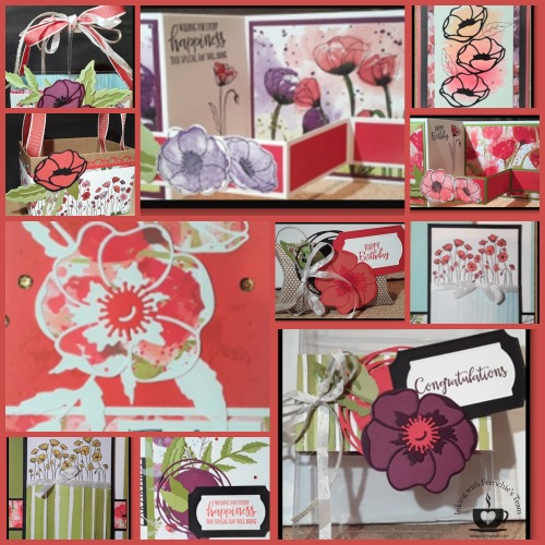 14 projects with 21 alternative colors using the Peaceful Poppies Suite for February customer appreciation