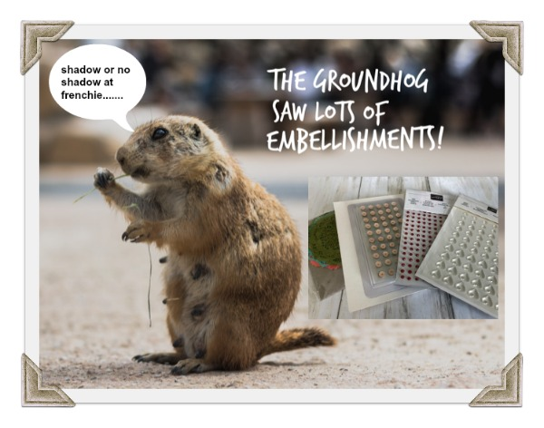 The Groundhog Saw A Shadow Of Embellishments, Get A Sweet Deal….