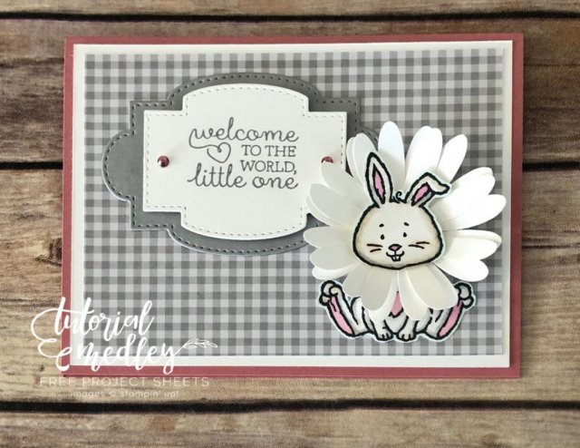 Welcome Easter card with the Bunny and daisy.