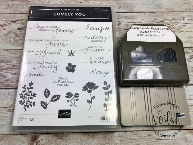 Lovely Labels Pick a Punch, Lovely You Stamp set