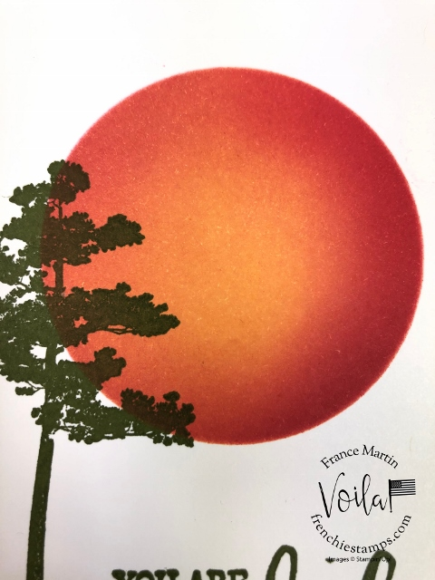 Simple way to sponge a moon or sunset using a window sheet. Stamp set is Rooted in Nature.