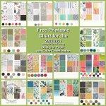 Designer Paper Chart for Stampin